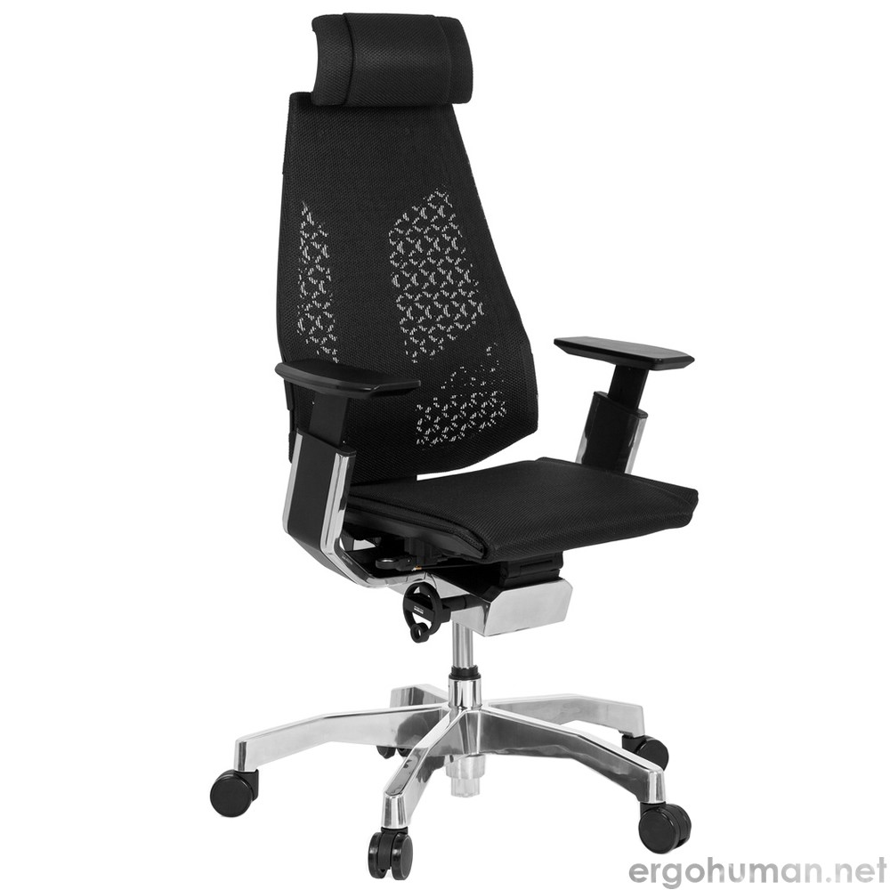 Genidia Black Mesh Office Chair